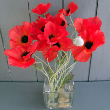 Artificial Red Poppy Flowers in Glass Vase