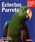 Eclectus Parrots Everything about Purchase Care Feeding Housing by McElroy Katy