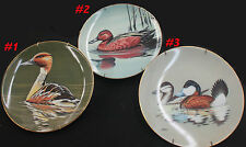 Collectible Plate: Federal Duck Stamp Competition Winner