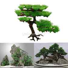 Green Pine Tree Aquarium Ornament Plant Office Bonsai Rockery Fish Tank Decor CA