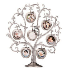 apple tree,picture frame. family memories. Family friends photo display frame