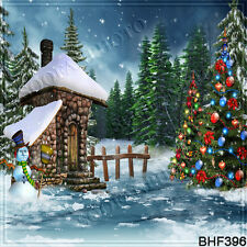 Christmas 10'x10' Computer/Digital Vinyl Scenic Photo Background Backdrop BHF396