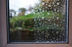 Decorative or Privacy Static Window Film :::BLOSSOMS:::