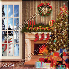 Christmas 10'x10' Computer-painted Scenic Photo Background Backdrop SZ254B11
