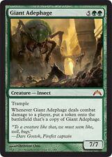 Adephaga Gigante - Giant Adephage MTG MAGIC GtC Gatecrash English