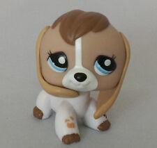 """In Hand LPS Little  Pet Shop Mini 3"""" figure Toy Long Ear Dog Blue Eyes"""