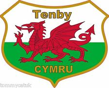 Tenby Welsh Dragon Flag Caravan Exterior Vinyl Stickers Wales Cymru Decals