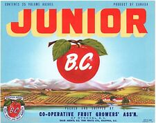APPLE CRATE LABEL CANADA CANADIAN VINTAGE JUNIOR WYNNDEL BRITISH COLUMBIA 1950 2