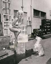 Barbara Nichols 8x10 Photo 004