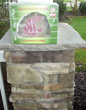 New in Pack Washington State Cougars Lawn Standing Stone Porch Mancave Bar Pool