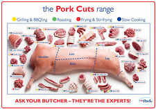 "pork cuts pig diagram  poster High Quality Silk wall Poster 12x18"" KRIT18"