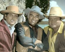 "BONANZA MICHAEL LANDON LORNE GREENE DAN BLOCKER 8x10"" HAND COLOR TINTED PHOTO"