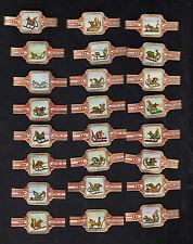 Série complète de 24  Bagues  de Cigare Label Taf BN10292 Traineaux neige