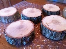 5x Real wood Log Slice Tree Oak Christmas Table Round Rustic Chic 9-11cmx3Cm