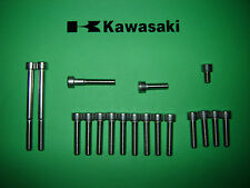 Kawasaki AR125 KE125 125cc  Engine SS Stainless Allen Screw Kit *UK FREEPOST*