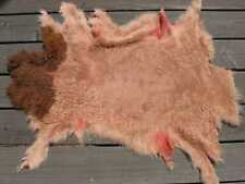 sheepskin shearling leather hide Salmon & Brown w/Wild Burnt Orange suede back