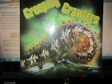 Creeping Crawlers by Tom Greve - My First Discovery Series