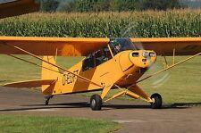 Piper PA-18-95 Super Cub  Private Airplane Desktop Kiln Dry Wood Model Regular
