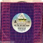 "PETER ALLEN - NOT THE BOY NEXT DOOR - 7"" 45 VINYL RECORD - 1983"