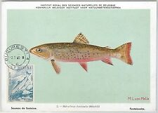 52589  - ROMANIA -  POSTAL HISTORY: MAXIMUM CARD - 1960  ANIMALS  Fish