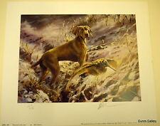 Mick cawston signée édition limitée veimaraner dans la neige chien imprimé
