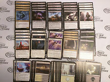 LIFE GAIN ALLIES! Deck -60 Cards - White Black - Ready to Play - MTG Magic FTG