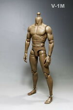 "1:6 Doll Model Toy Muscle Muscular Nude Male Body No Head 12"" Action Figure V-1M"