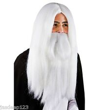 White Wizard Wig and Beard Wig Fancy Dress Costume Halloween Merlin Gandalf