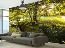 Autumn Scene Wall Mural Photo Wallpaper GIANT WALL DECOR PAPER POSTER FREE GLUE