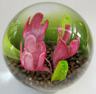 CAITHNESS GLASS Limited Edition Sringtime flower vintage paperweight