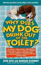 Why Does My Dog Drink Out of the Toilet: Answers and Advice for All Kinds of Do