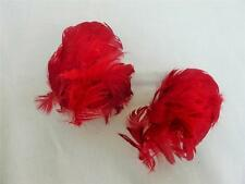 "TWO ANTIQUE VICTORIAN RED ""WING"" FEATHER HAIR / HAT MILLINERY PLUMES c1900"
