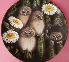 WEDGWOOD ELF OWL CHICKS PLATE DICK TWINNEY THE BABY OWLS SERIES