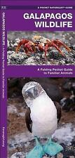 Pocket Naturalist Guide: Galapagos Wildlife : A Folding Pocket Guide to...