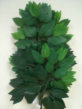 "12 Sprays GREEN Ficus Leaves 23"" Silk Artificial Stem Greenery 513GR"
