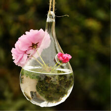 Clear Water Drop Glass Wall Hanging Vase Bottle for Plant Flower Decor