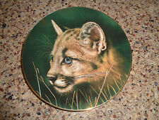 1990 - Cougar Cub - Big Cats Plate - Princeton Gallery