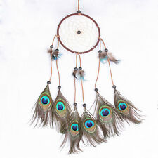Peacock Feather Dream Catcher Home Wall Hanging Room Decoration Ornament 22""