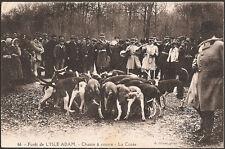 Forêt de L'ISLE ADAM (95) - Chasse à courre - La Curée