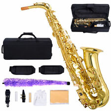 New Professional Eb Alto Sax Saxophone Paint Gold with Case and Accessories WP