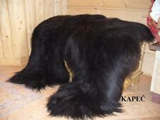 WONDERFUL GENUINE ICELANDIC SHEEPSKIN RUG - BLACK SUPER SOFT LONG WOOL BIG SIZE!