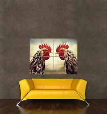 POSTER PRINT GIANT PHOTO COMPOSITION TWO ROOSTERS COCKERELS FACE OFF PAMP120