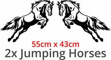 JUMPING HORSES Sticker Decal Vinyl For Horse Box / Lorry / Truck / Van / Trailer