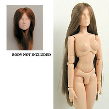 Obitsu 27cm 1/6th Scale F03NC04 Rooted Head Med Brown