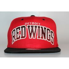 New NHL Detroit Red Wings Mitchell & Ness Vintage Arch Gradient Snapback Cap Hat