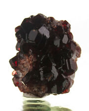".9"" Cherry Red Gemmy UVITE TOURMALINE Crystals on Magnesite Brazil for sale"