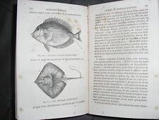 Pathologie exotique par Docteur Nielly animaux végétaux nuisibles poissons