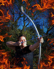 TAKEDOWN !! Silver Bow with 6 Arrows, Inspired by the Hunger Games