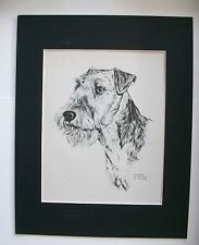 Airedale Terrier Dog Print Gladys Emerson Cook Bookplate 1945 11x14 Matted