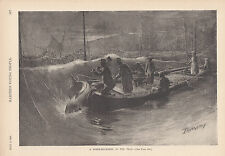 ANTIQUE FISHERMEN COMMERCIAL FISHING MACKEREL FISH ANTIQUE ART PRINT 1891